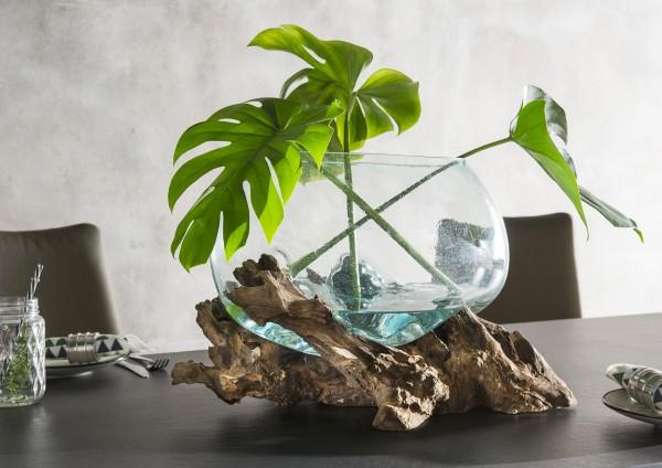 Unikat-Dekowurzel mit mundgeblasener Glasschale / - vase
